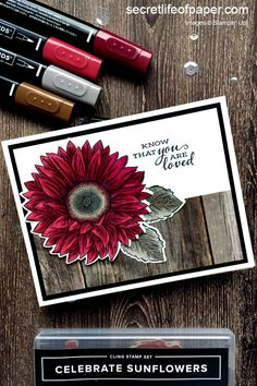 New Stampin' Up! Celebrate Sunflower Bundle in Cherry Cobbler.  #stampinup #stampinupdemo #celebratesunflowers #diycards #handmadecards Penny Black, Scrapbook Box, Sunflower Cards, Stampin Up Catalog, Stamping Up Cards, Fall Cards, Homemade Cards, Making Ideas, Card Making