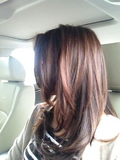 Perfect Reddish brown hair with layers for fall !