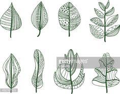 leaf vector veins - Google Search