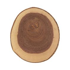 Terrain Ash Wood Cutting Board