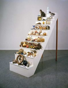 "Mark Dion ""Scala Naturae,"" 1994 Stepped plinth, artifacts, specimens, taxidermic animals, and bust, 93 3/4 x 39 3/8 x 117 inches Courtesy Tanya Bonakdar Gallery, New York"