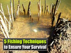 5 Fishing Techniques to Ensure Your Survival, fishing, how to catch fish, survival, food, catch fish, shtf, prepping, emergency preparedness, hunting,