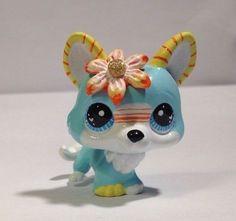 HobbyMomCustoms Littlest pet shop *  Miami  * Custom Hand Painted LPS Corgi Dog OOAK #Hasbro
