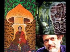 Terence Mckenna: The enemies of imagination. ~ http://wakingtimes.com/gallery/2014/07/04/enemies-imagination/