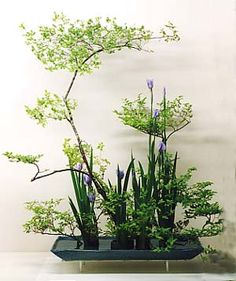 ikebana international montreal - Google Search