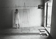 Anne Arden McDonald