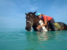 An amazing experience awaits you when you ride with Provo Ponies, TCI. This pix shows Camille, the owner, with one of her wonderful horses. Turks And Caicos Honeymoon, Turquoise Water, Island Beach, Beach Fun, Vacation Destinations, Oceans, Snorkeling, Homeland, Ponies