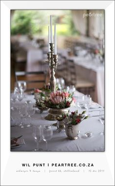protea Protea Centerpiece, Flower Centerpieces, Wedding Centerpieces, Wedding Decorations, Table Decorations, Protea Wedding, Wedding Bouquets, Wedding Flowers, Wedding 2017