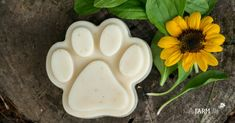 Shampoo Bars Recipe {with neem oil} Homemade Dog Shampoo Bar with Plantain Leaves & a SunflowerHomemade Dog Shampoo Bar with Plantain Leaves & a Sunflower Homemade Dog Shampoo, Pet Shampoo, Shampoo Bar, Homemade Soap Recipes, Goat Milk Soap, Lotion Bars, Soap Making, Neem Oil, Leaves