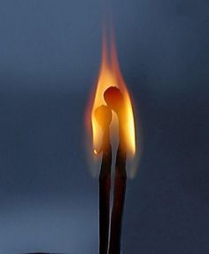 the fire of love...