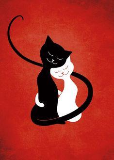 Kedi romantik-komedi