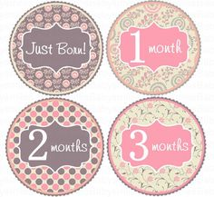 Monthly Baby Onesie Stickers Baby Month Stickers Baby Girl Month Stickers Monthly Onesie Stickers Baby Milestone Stickers Baby Shower Gift