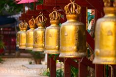 "A row of golden Buddhist bells (called ""Ghanta"" in Sanskrit), are used in religious ceremonies."
