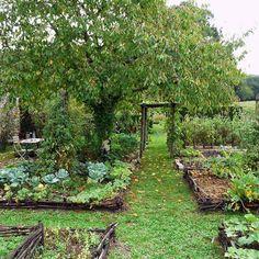 Home Vegetable Garden Design, Herb Garden Design, Backyard Vegetable Gardens, Potager Garden, Garden Landscaping, Landscaping Ideas, Veg Garden, Garden Types, Forest Garden