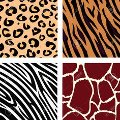 Animal pattern - tiger, zebra, giraffe, leopard