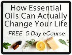 Festive Ways To Use Essential Oils This Christmas - Make And Tend Best Diffuser, Diffuser Blends, Essential Oil Diffuser, Essential Rewards Young Living, What Are Essential Oils, Orange Christmas Tree, Christmas Makes, Thieves Cleaner, Wool Dryer Balls