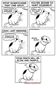 """25 Very Real Cat Comics For Your Caturday Pleasure - Funny memes that """"GET IT"""" and want you to too. Get the latest funniest memes and keep up what is going on in the meme-o-sphere. Cute Cats, Funny Cats, Funny Animals, Cute Animals, Wild Animals, Baby Animals, Cats Humor, Funny Horses, Adorable Kittens"""