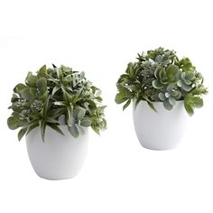 Mixed Succulent w/White Planter (Set of 2).  #Succulents are known the world over for their pretty shapes and varied textures. This arrangement really brings those qualities out front and center. The leafy greens explode forth from the included white planter, ensuring you never see the same shape twice. best of all, this is a set of two, so your decorating options double. Ideal for any home decor, or office reception area. Makes a fine gift, too. #silkplants