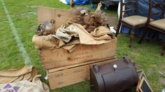 a crate full of antique taxidermy birds hoping to fly off shortly to new homes from Newark antique fair