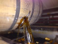 Bourbon pouring from a barrel before bottling