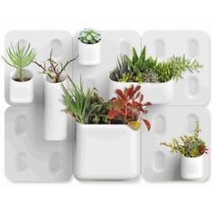 try a vessel, one wall plate, 4, 6, or 9 - as many as you want!  urbio is designed to be modular, allowing you to grid out your urban garden customised to your personal living space. urbio is equipped with large neodymium magnets that are strong enough to hold a variety of weights to your wall. these magnetic vessels allow for easy removal, rearrangment, and customization. urbio can also provide a vertical solution for all types of organizational needs within your home.