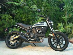 Ducati Scrambler, Bike Rider, Motorcycle, Vehicles, Motorcycles, Car, Motorbikes, Choppers, Vehicle