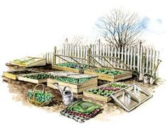 Garden With Cold Frames to Grow More Food - Organic Gardening - MOTHER EARTH NEWS