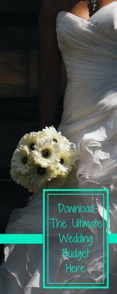 Georges Wedding Budget Spreadsheet Plus v20 Wedding budget