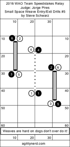 AgilityNerd Dog Agility Blog : WAO 2016 Relay Small Space Weave Entry/Exit Drills