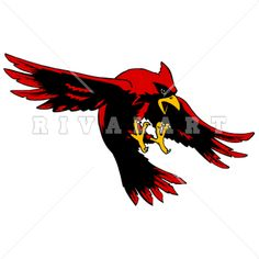 Mascot Clipart Image of Cardinal Swooping Graphic