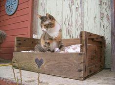 katzenbett aus paletten - Gartenmöbel aus Paletten - 30 interessante Beispiele