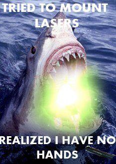 46 best sharks with friggin lasers images on pinterest sharks