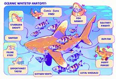 Astral Requin — Anatomy of a Comic Sans Shark ~ Arte Com Grey's Anatomy, Anatomy Art, Animal Drawings, Cute Drawings, Character Art, Character Design, Cute Shark, Creature Design, Pretty Art