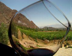 Resultados de la Búsqueda de imágenes de Google de http://www.vinosdelapatagonia.org.ar/imagenes_vinos/cafayate-y-sus-buenos-vinos.jpg