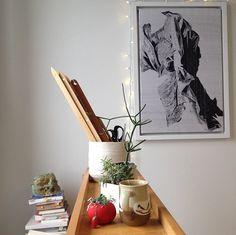 Studio plants/weaving/books/lights aportashop.com