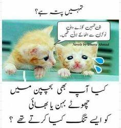 Hahaha 😂 g han humain tang kia gaya hy 😟😂😂 Cute Funny Quotes, Stupid Funny Memes, Funny Puns, Funny Facts, Crazy Jokes, Urdu Funny Poetry, Brother Sister Quotes, Jokes Images, Islamic Phrases