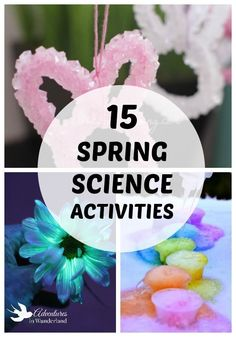 15 super fun spring science activities for elementary aged kids.