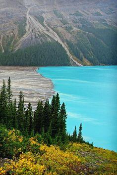 Peyto Lake  Source: systemik