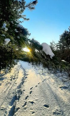 Beautiful Places, Beautiful Pictures, Places In England, Winter Scenery, Landscape Pictures, Cozy Christmas, Let It Snow, Sunrises, Winter Wonderland