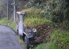 Abandoned Cars I | MotorwayAmerica