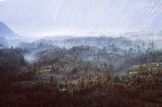 East Java by Reuben Wu