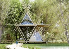"""Leading architects are """"turning the focus back on bamboo."""" Bamboo Architects"""