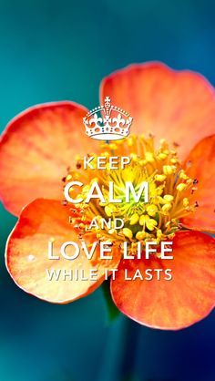 Keep Calm and Love Life While it Lasts Make You Smile Quotes, I Love You Quotes, Love Yourself Quotes, Be True To Yourself, Keep Calm Posters, Keep Calm Quotes, Important Quotes, Stay Calm, Self Motivation
