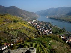 Spitz an der Donau, Wachau (Lower Austria)