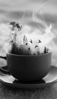 Cup Of Nature
