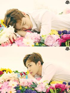 @RealVIXX:  I am Rovix. This is Hongbin sunbae who acted as the last flower in the VIXXCHOOL fanmeeting VCR. #Rovix_DoesntKnow_WhichAre_Flowers #VIXXCHOOL_aftermath @RedBeans93 #Iam_thelast_flower  As expected, you can see flower Hongbin sunbae's face… Rovix is revealing another shot. We plan on revealing that Hongbin sunbae got all the nonsense quiz questions wrong on VIXXCHOOL Review. It's not a secret that we plan on revealing the 6VIXX sunbae's review soon!  Trans. cr: fyeah-vixx