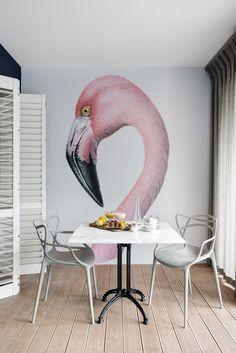 Batalha de tendências: flamingo x unicórnio