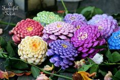 How to Make Zinnia Flowers from Pine Cones