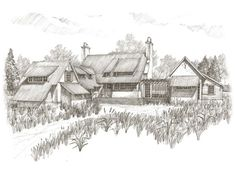 """Pursley Dixon Architecture on Instagram: """"Bayside Retreat #buildbeautifulthings #pursleydixon #architecture #baysideretreat #handrendering #handdrawn"""" White Orchids, Big Family, Jamaica, Seaside, How To Draw Hands, Architecture, Building, Beach House, Outdoor"""