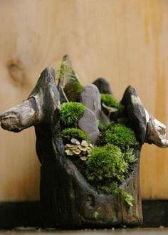 tree stump garden by jerrymee